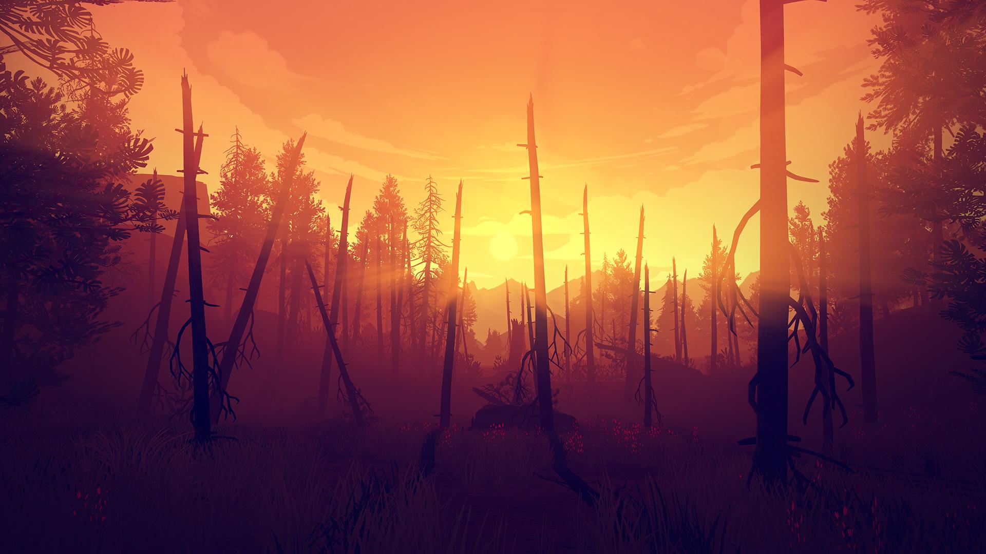 1444677942-burned-woods
