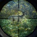بازی The Hunter: Call of the Wild