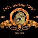 شرکت MGM