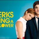 سکانس فیلم the Perks of Being A Wallflower
